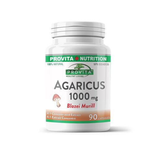 Agaricus Blazei Murill - immunrendszer serkentő, rák-ellenes