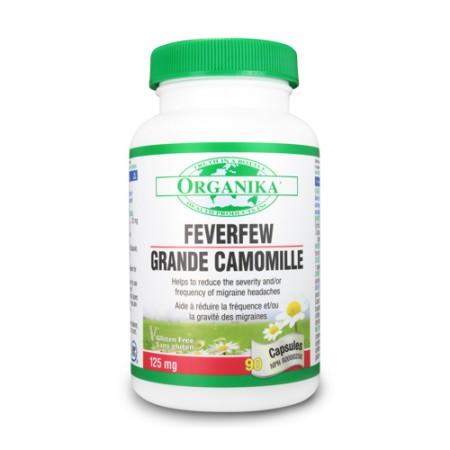 Feverfew - egy természetes aszpirin